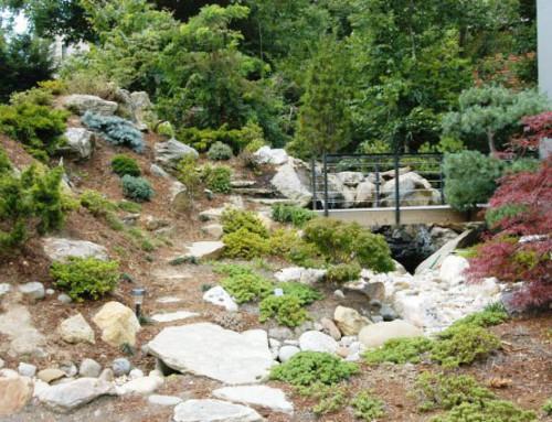 Bridge and Landscape